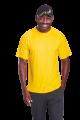 135g Barron Polyester T-Shirt (TST135B) S-L