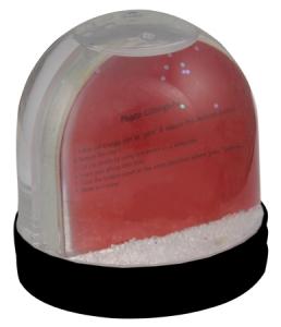 Picture Snow globe