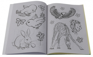 Wildlife Stickers and colouring Book